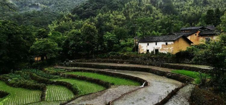 慶元縣三丘田休閑農莊