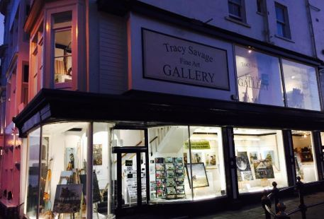 Tracy Savage Fine Art Gallery