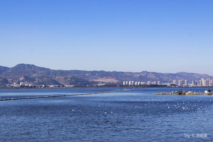 Dian Lake3