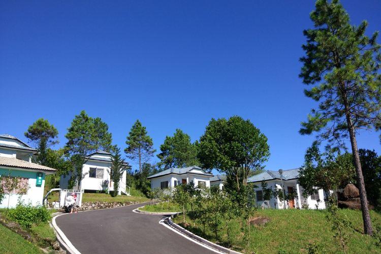 大洋國際生態旅遊度假區3