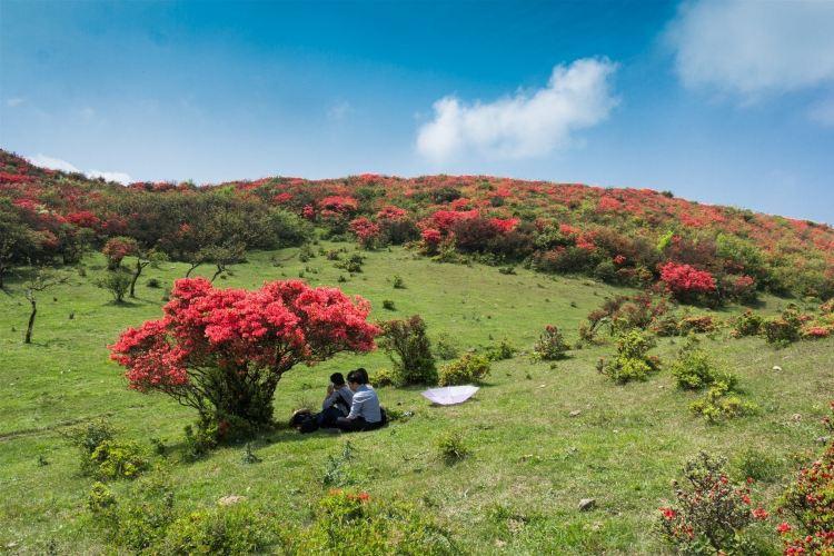 Baguanao Scenic Area1
