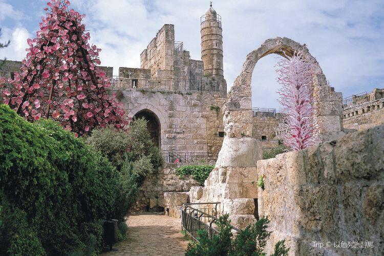 King David's Tomb1