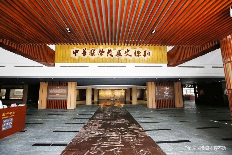 Shanghaizhongyiyao Museum1