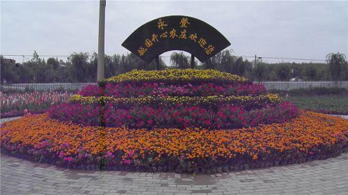Yueguokaixin Farm
