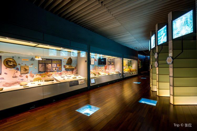 지질박물관1