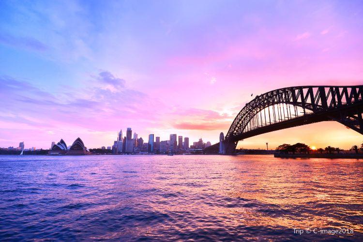 悉尼海港大橋4
