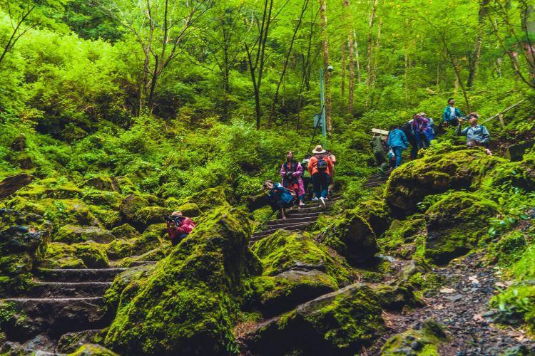 Huoshankou National Forest Park1