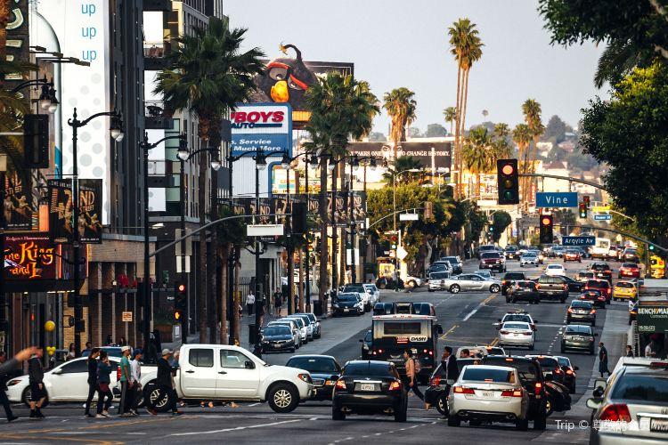 Hollywood4
