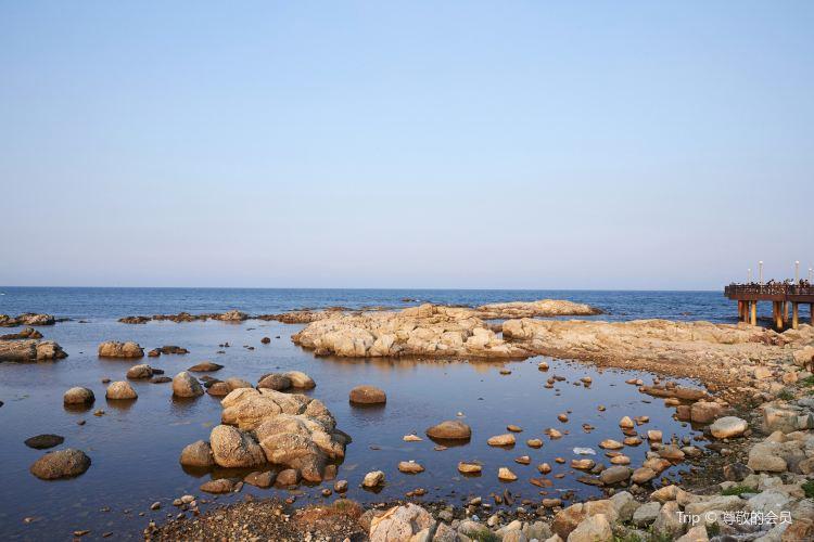 호미곶 해맞이광장2