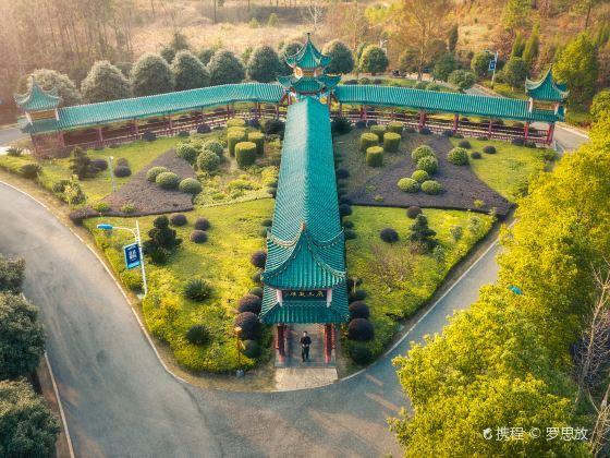 Zhaoyang Park