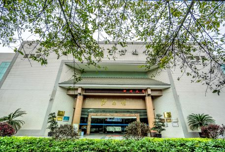 Sichuan University Museum