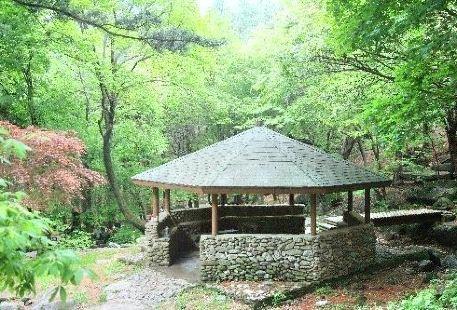 Dutasan Recreational Forest