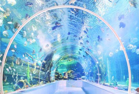 Linyi Ocean World Theme Park