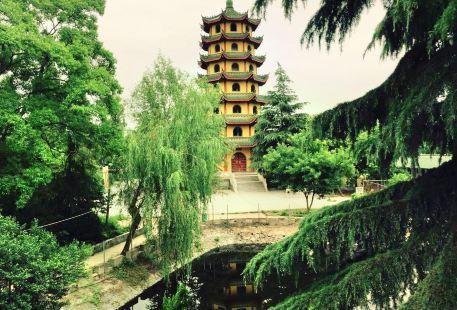 Yuji Park