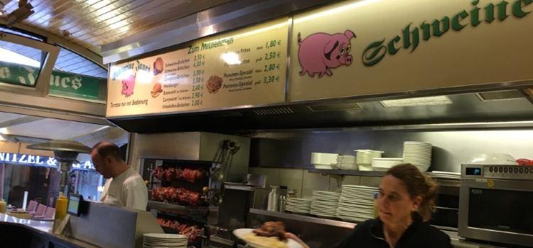 Schweine Janes1