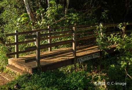 Moalepe Trail