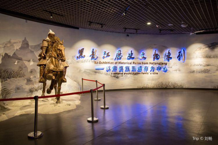 Heilongjiang Provincial Museum1