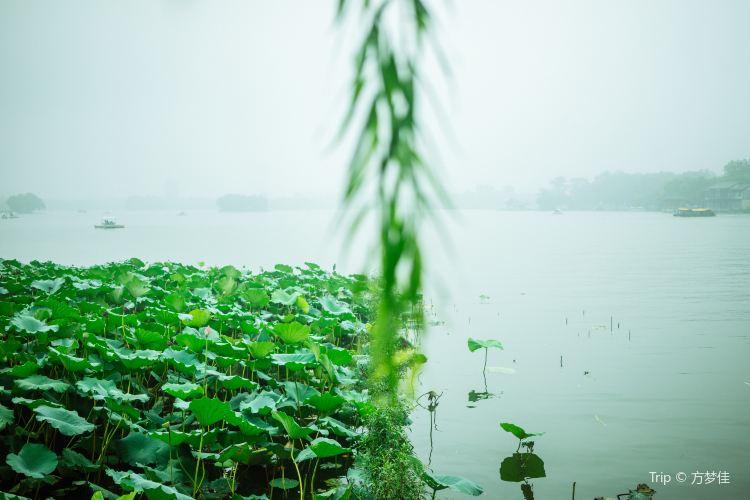 Daming Lake Scenic Area4