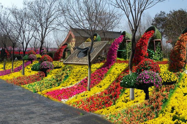 The Flower Expo Park of Bangbu3