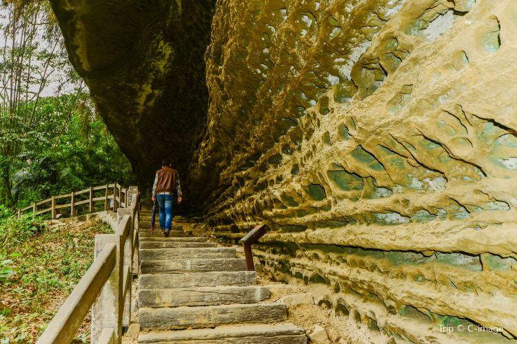 Rueili Scenic Area Swallow Cliff2