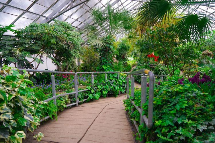 愛倫溫室花園3
