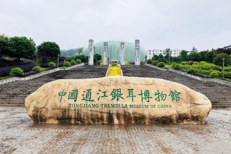 Tongjiangyin'er Museum3