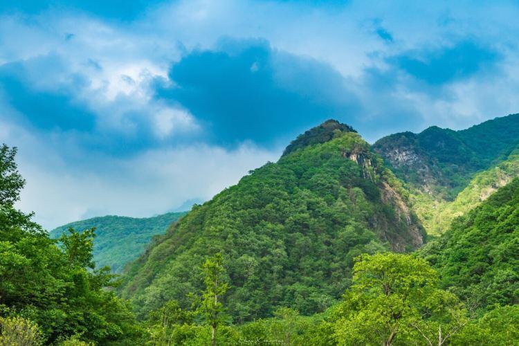 Tangjia River Nature Reserve2