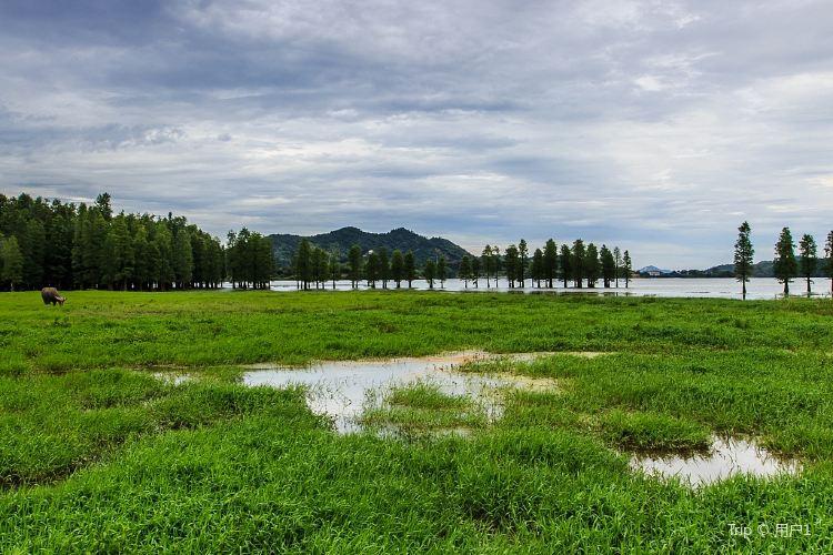 Yangtian Lake Scenic Area1