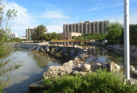 白楊河公園