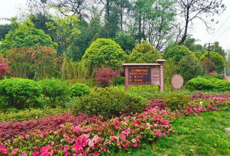 長坡嶺森林公園