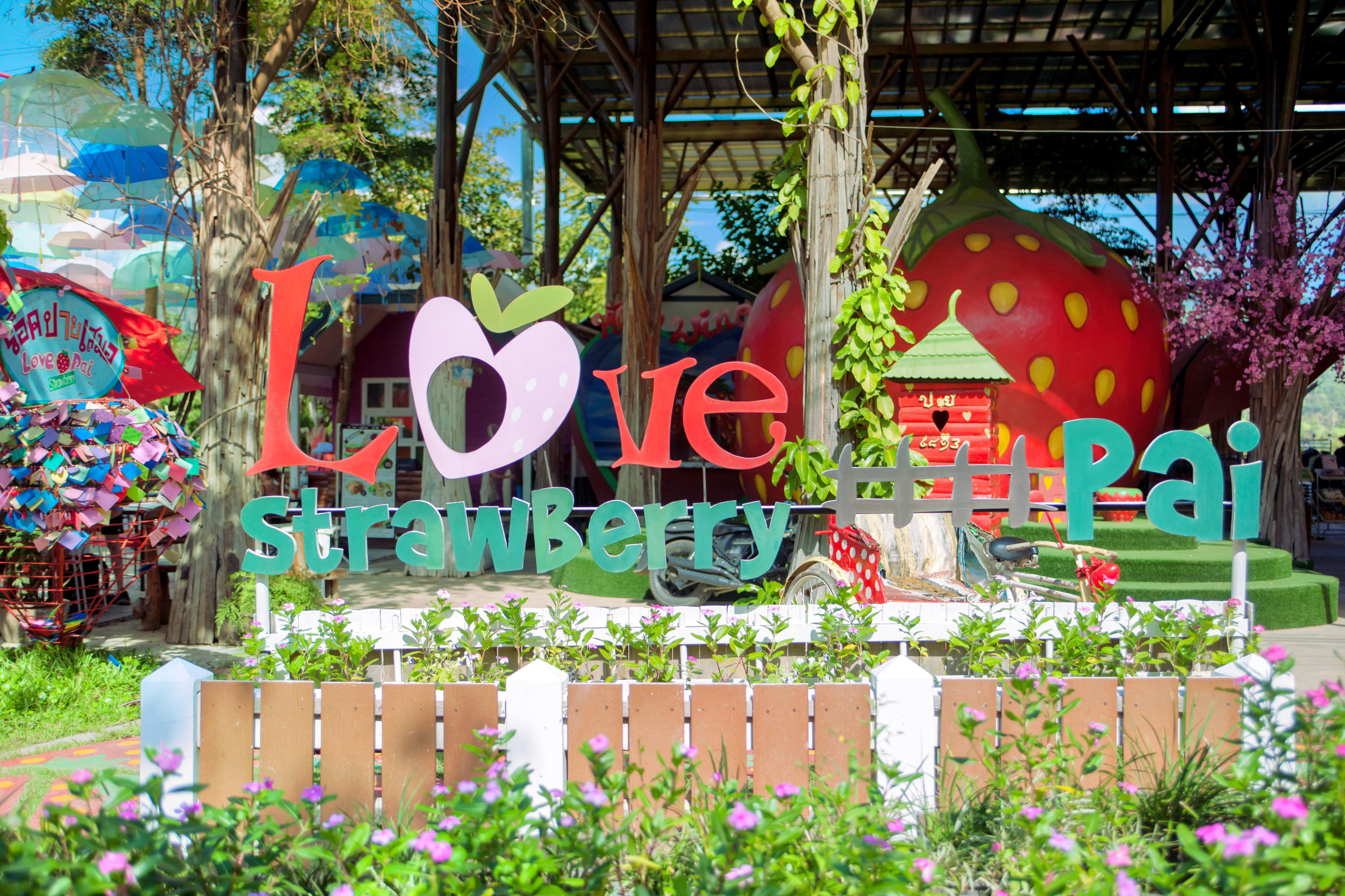 Love Strawberry Pai