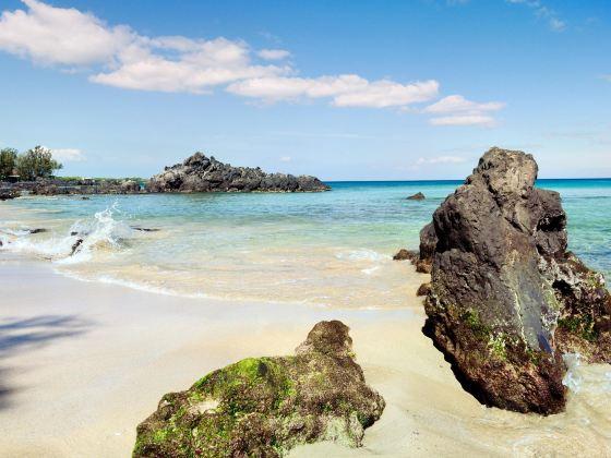 Waialea Beach