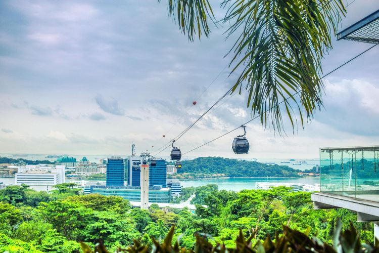 Mount Faber Cable Car