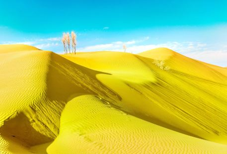 Tengger Golden Sand Sea