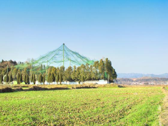 朱鹮自然保護區