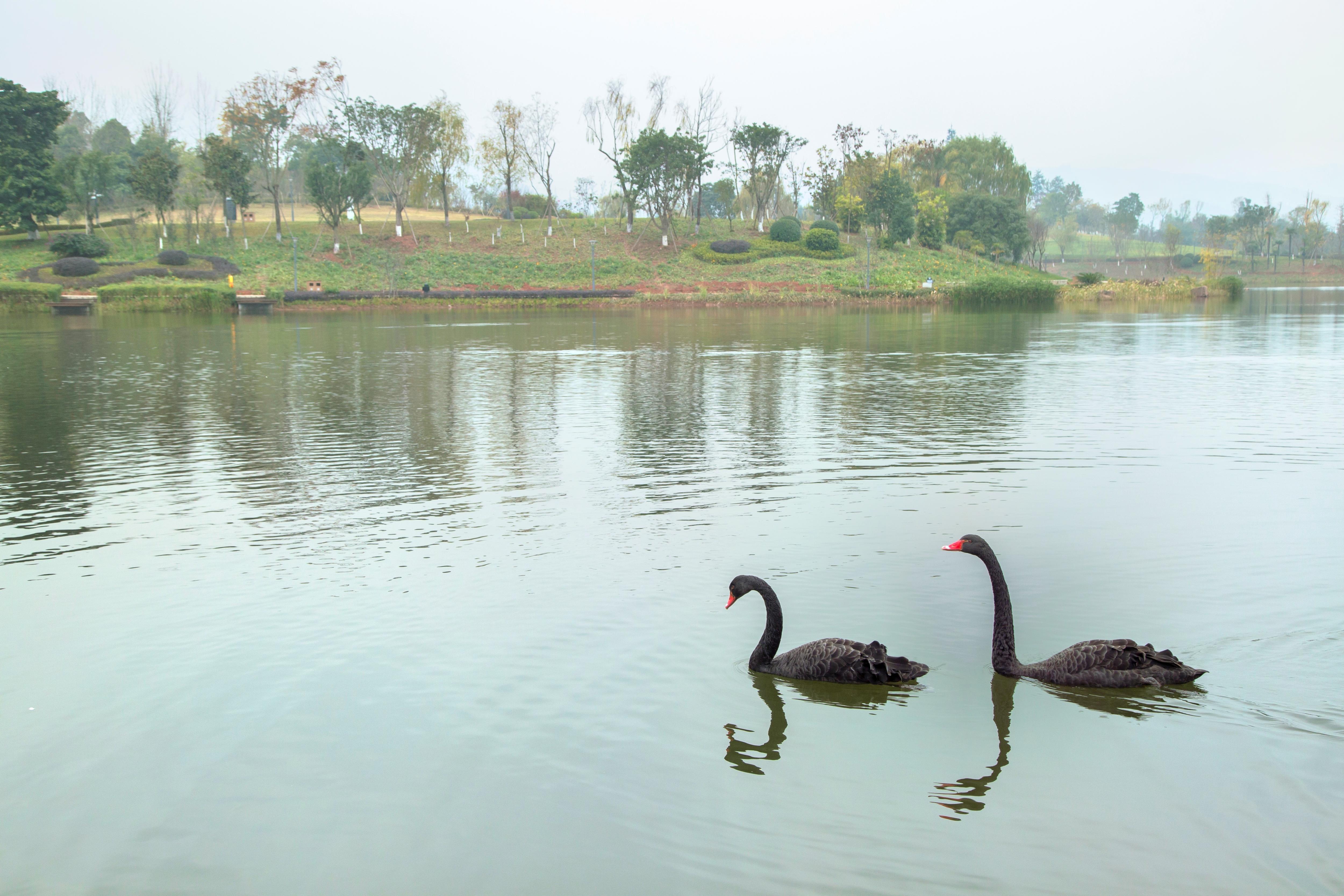 Sancha Lake Scenic Area