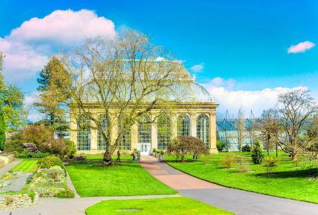 愛丁堡皇家植物園