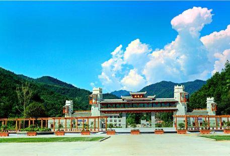 Lueyang Wulongdong National Forest Park