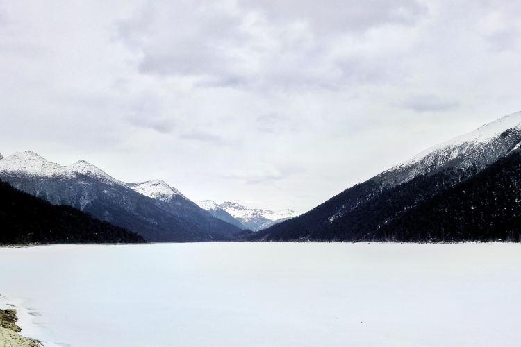 措木及日湖3