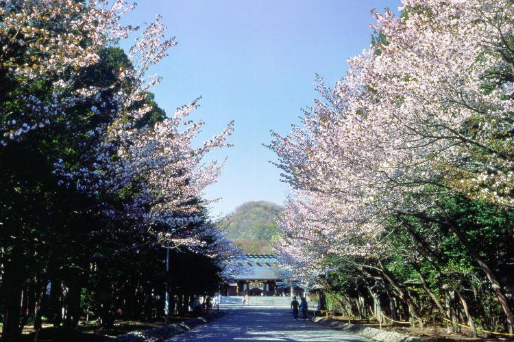 Noboribetsu Onsen Flower Tunnel