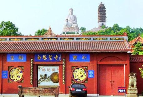 Baita Shengsi