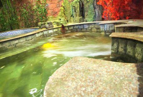 Dongying Hekou Binguan Hot Spring