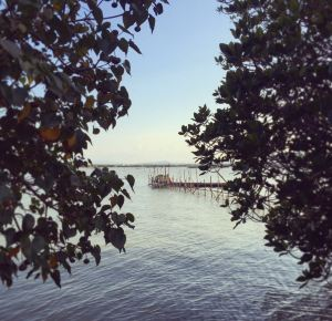 Songkhla,Recommendations