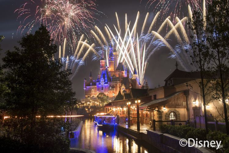 Ignite the Dream - A Nighttime Spectacular of Magic and Light1