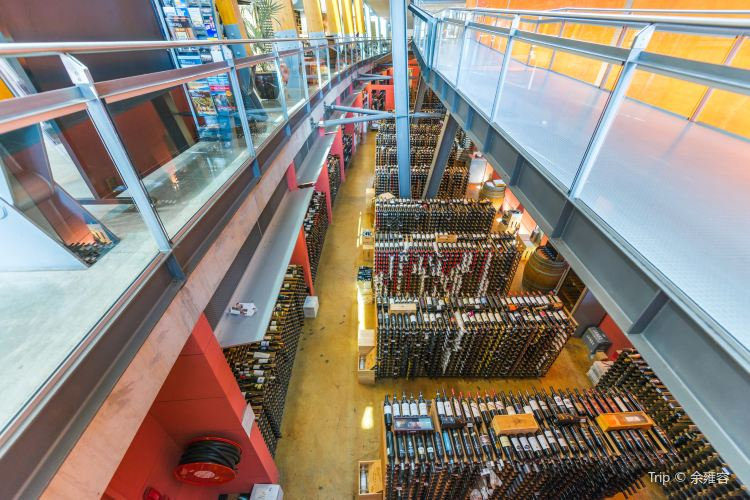 National Wine Centre of Australia2