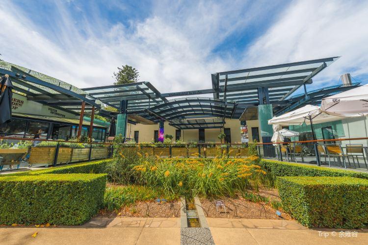 Adelaide Botanic Garden2