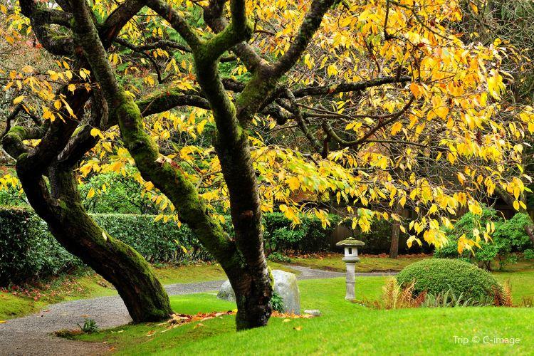 Nitobe Memorial Garden2