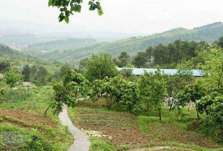 Meizhuang Farm