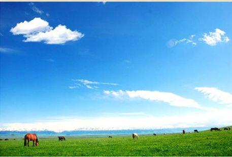 巴勒克蘇草原