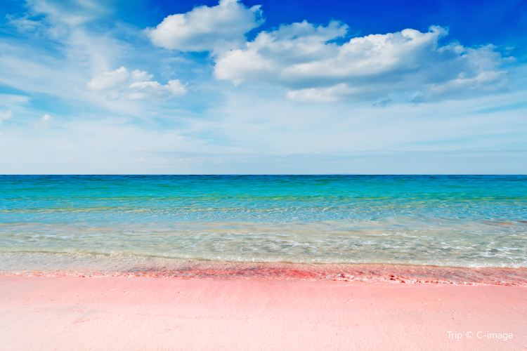 Pink Sand Beach2